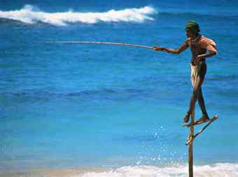 Stilt fisherman at work